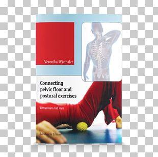 Connecting Pelvic Floor And Postural Exercises. For Women And Men. Con DVD Perineum Pelvis Dalla Ginnastica Pelvica Alla Ginnastiva Vertebrale. Per Donne E Uomini. Con DVD PNG