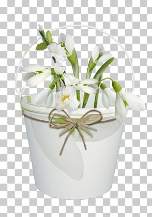 March 8 Flower Bouquet Cut Flowers PNG