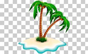 Tree Arecaceae Coconut PNG