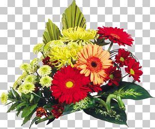 Flower Bouquet Desktop Transvaal Daisy Floral Design PNG