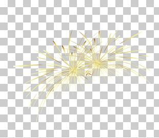 Yellow Gold Fireworks PNG