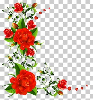 Floral Design Graphics Flower PNG