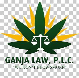Logo Leaf Graphic Design Organization Font PNG