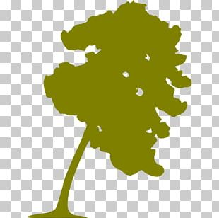 Computer Icons Tree PNG