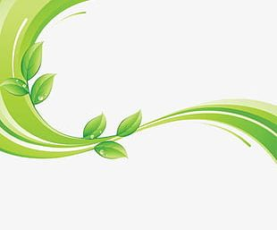 Small Fresh Green Leaves Background Green Lines PNG
