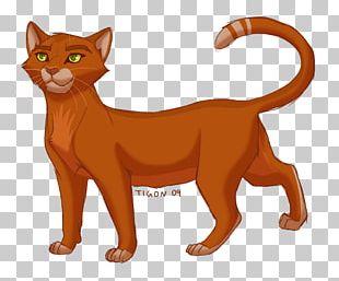 Cat Dawn Warriors Firestar Tigerstar PNG