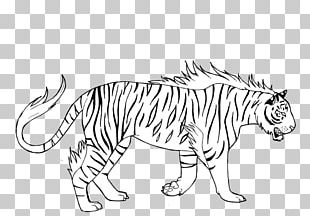Tiger Lion Cat Whiskers PNG