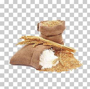 Pasta Common Wheat Spelt Durum Flour PNG