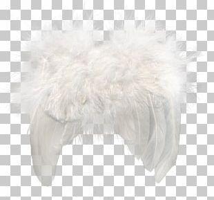 Fur Feather Snout PNG