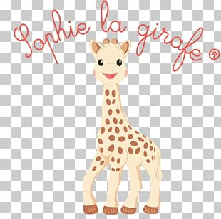Sophie The Giraffe Infant Teether Teething Child PNG