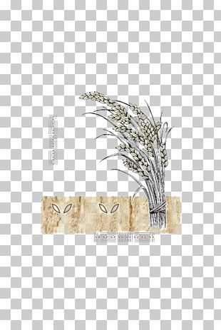 Rice Food Grain Icon PNG