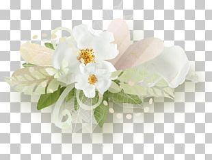 Petal Flower Rose White PNG