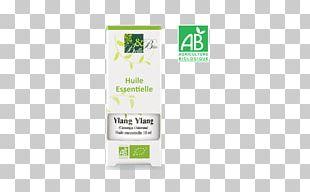 Essential Oil Perfume Eucalyptus Oil Aromatherapy PNG