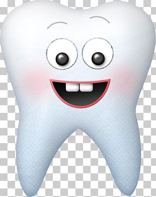 Tooth Fairy Dentistry Human Tooth PNG
