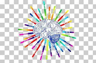 Human Brain Nervous System Electrical Brain Stimulation Spinal Cord PNG