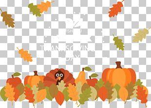 Leaf Thanksgiving Dinner Pumpkin Autumn PNG
