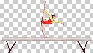 Rising Star Gymnastics Balance Beam Artistic Gymnastics Stock Photography PNG