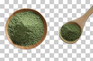Green Tea Ice Cream Matcha Shincha PNG