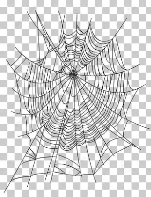 Spider Web Euclidean Illustration PNG