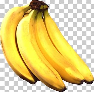 Four Bananas PNG