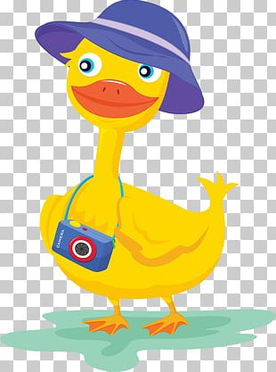 Duck Camera Photography Illustration PNG