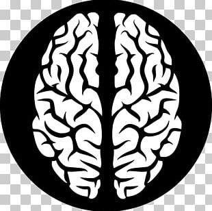 Human Brain Computer Icons PNG
