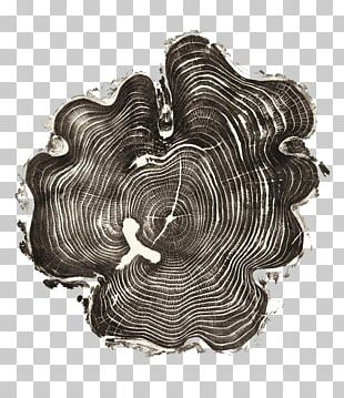 United States Woodcut Artist Printmaking Tree PNG