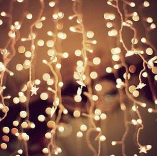 Christmas Lights Desktop Lighting PNG