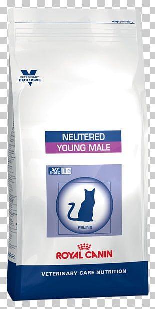 Cat Food Dog Neutering Royal Canin PNG