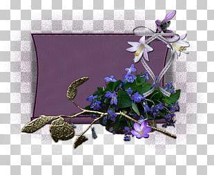 Floral Design Violet Cut Flowers Lavender PNG
