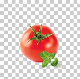 Bush Tomato Marmalade Sugar Food PNG