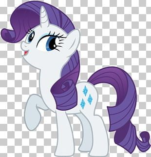 Rarity Pinkie Pie Applejack Rainbow Dash Twilight Sparkle PNG