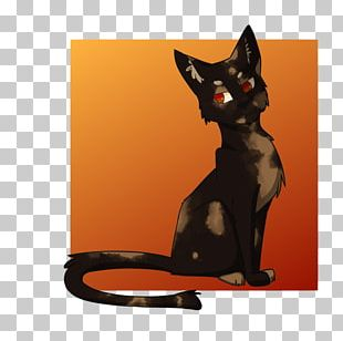 Black Cat Kitten Whiskers Paw PNG