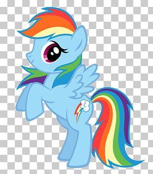 Rainbow Dash Rarity My Little Pony PNG