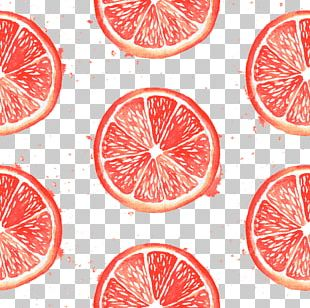Blood Orange Pomelo Lemon PNG