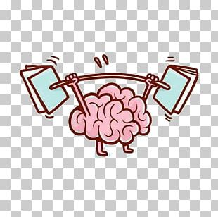 Brain Facts Drawing PNG