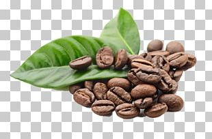 Kona Coffee Espresso Tea Coffee Bean PNG