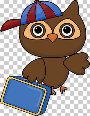 Student School Owl Classroom PNG