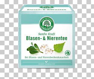 Green Tea Organic Food Matcha Darjeeling Tea PNG