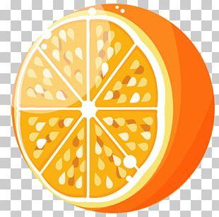 Orange Juice Orange Soft Drink PNG