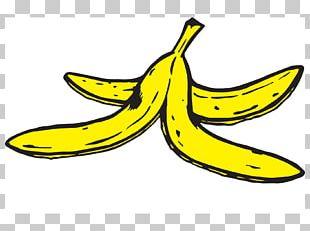 Banana Peel Livorno Il Vernacoliere RAI PNG