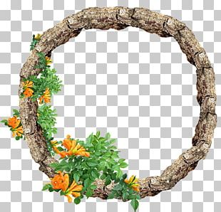 Frames Floral Design Photograph Illustration PNG