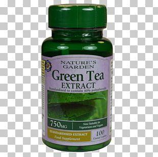 Dietary Supplement Garcinia Gummi-gutta Green Tea Capsule Tablet PNG