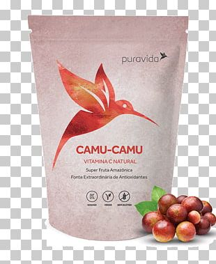 Juice Food Camu Camu Gluten-free Diet Chocolate Bar PNG