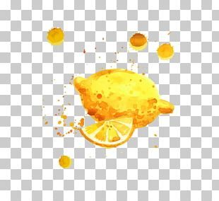 Lemon Auglis PNG
