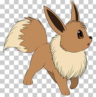 Eevee Dog Breed Jolteon Umbreon Pokémon PNG