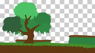 Woody Plant Tree Cartoon PNG