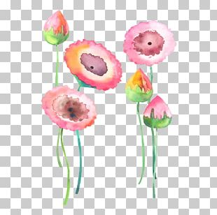 Watercolour Flowers Watercolor: Flowers Painting PNG