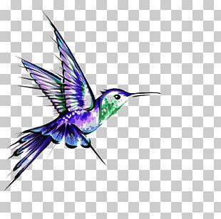 Hummingbird Tattoo Black-and-gray PNG