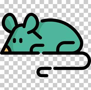 Snout Line PNG